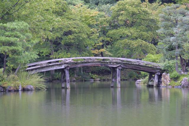 Japanese Garden Bridge Ponds